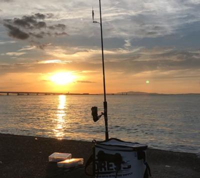 太刀魚を釣ろう!初心者向け太刀魚釣りの時期・仕掛け・釣り方のポイント